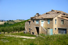 Large country house to be restored. It is in panoramic position and it is enriched by a vineyard and olive grove