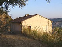 Farmhouse with large panoramic terrace and natural caves. The land around is spotted by olive trees and century old oak trees.