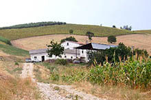 A large farm readily habitable in a panoramic position.