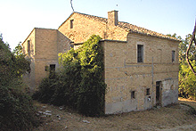 Beautiful farmhouse to be restored with organic vineyard and olive grove.