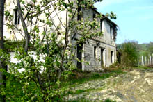 Old farmhouse on the mid hills of the vineyard and olive-grove area overlooking the Esino valley.