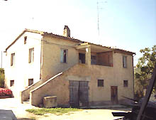 Country house in good condition, with annexes, with vineyard, olive grove and wide cultivated land.